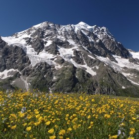 13. The Caucasus Mountains
