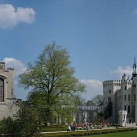 41. Hluboka Castle